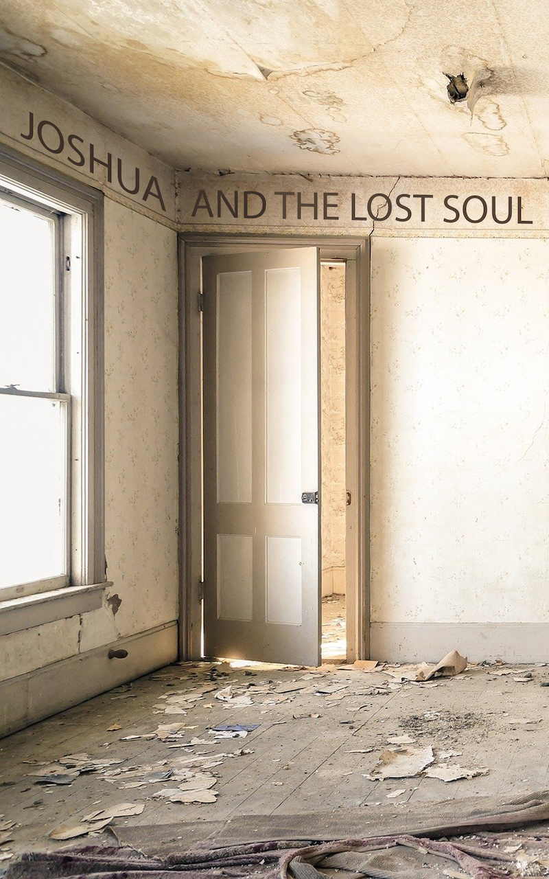 Joshua and the Lost Soul front cover